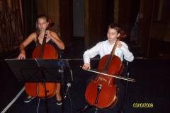 violoncheli